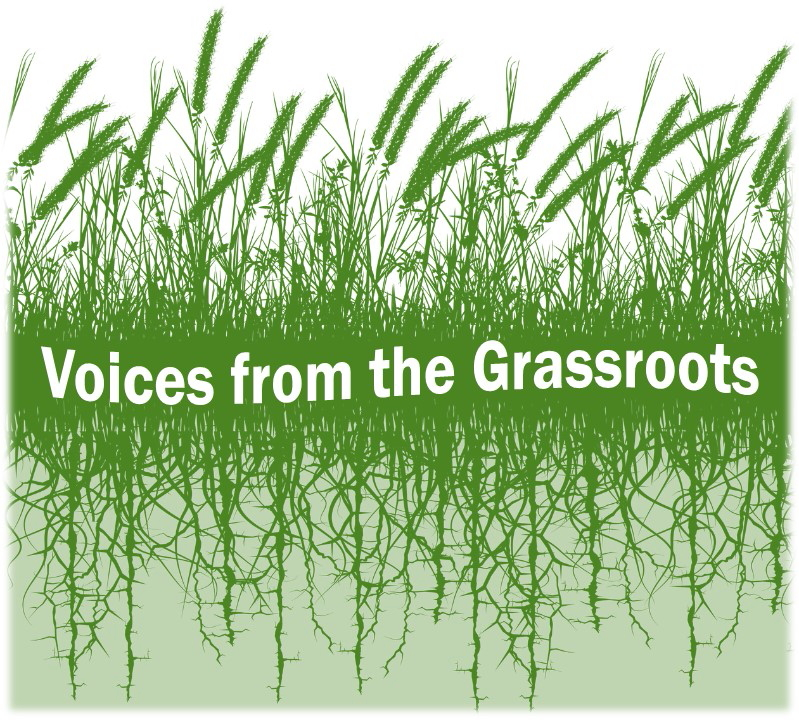 Voices from the Grassroots logo