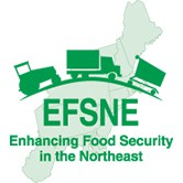 EFSNE Project Logo